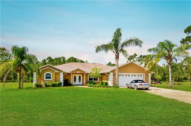 135 Buckhorn Road, New Smyrna Beach, FL 32168 (MLS #V4900780) :: The Duncan Duo Team