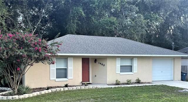 1460 6TH Street, Orange City, FL 32763 (MLS #V4920242) :: Zarghami Group