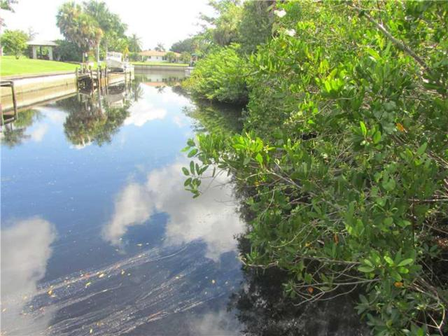 28374 Royal Palm Drive, Punta Gorda, FL 33982 (MLS #C7046992) :: The Duncan Duo Team