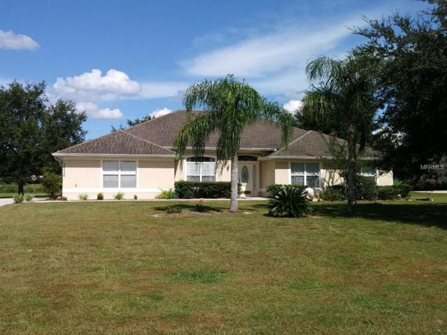 36526 Barrington Drive, Eustis, FL 32736 (MLS #O5561604) :: The Duncan Duo Team