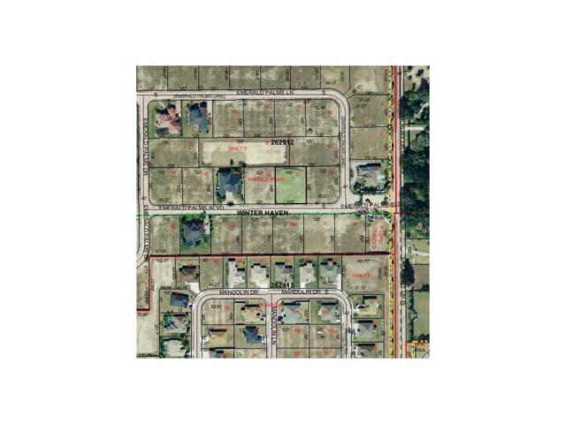 Emerald Palms Blvd, Winter Haven, FL 33884 (MLS #P4623172) :: Godwin Realty Group
