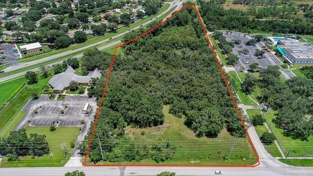 Plant City, FL 33567 :: Zarghami Group