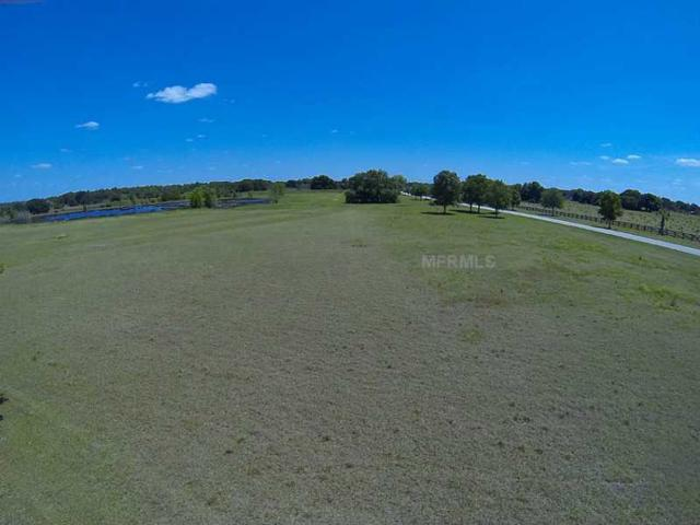 1 Campbell Oak Lot 94A, Thonotosassa, FL 33592 (MLS #T2593376) :: The Duncan Duo Team