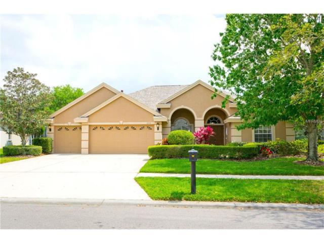 10556 Greencrest Drive, Tampa, FL 33626 (MLS #T2874482) :: The Duncan Duo & Associates