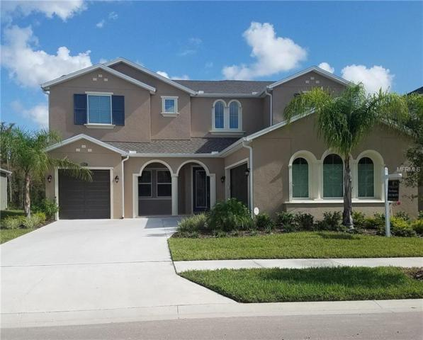 29368 Picana Lane, Wesley Chapel, FL 33543 (MLS #T3139667) :: Team Bohannon Keller Williams, Tampa Properties