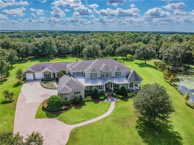 11723 Doe Creek Drive, Lithia, FL 33547 (MLS #T3207850) :: EXIT King Realty