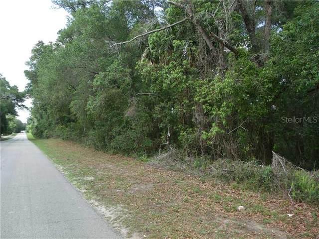 E Lansdowne Avenue, Orange City, FL 32763 (MLS #V4642299) :: Everlane Realty