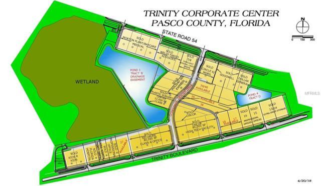 18 Trinity, Odessa, FL 33556 (MLS #W7515789) :: Homepride Realty Services