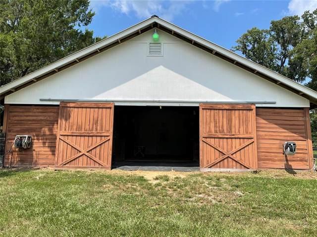 13557 NW Nw Gaineville Road, Reddick, FL 32686 (MLS #OM624582) :: Zarghami Group