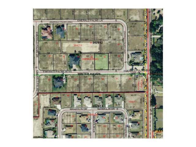 Emerald Palms Blvd, Winter Haven, FL 33884 (MLS #P4623172) :: Premium Properties Real Estate Services