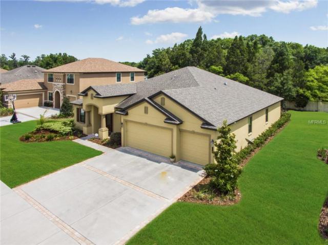 4920 Lago Vista Circle, Land O Lakes, FL 34639 (MLS #T3106651) :: Delgado Home Team at Keller Williams