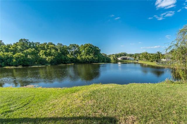 21238 Preservation Drive, Land O Lakes, FL 34638 (MLS #T3170823) :: Team TLC | Mihara & Associates