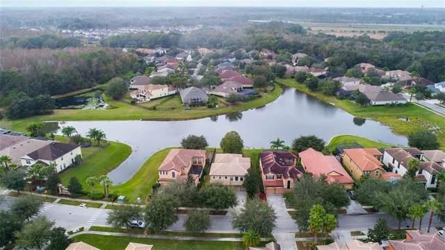 20206 Heritage Point Drive, Tampa, FL 33647 (MLS #T3217074) :: Team Bohannon Keller Williams, Tampa Properties