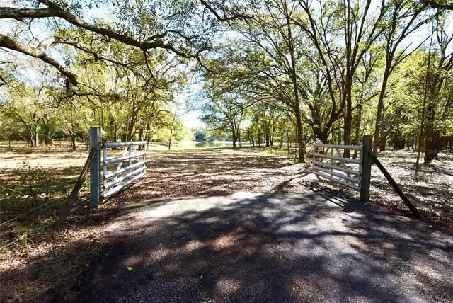 18629 Walker Road, Lutz, FL 33549 (MLS #T3226752) :: The Nathan Bangs Group