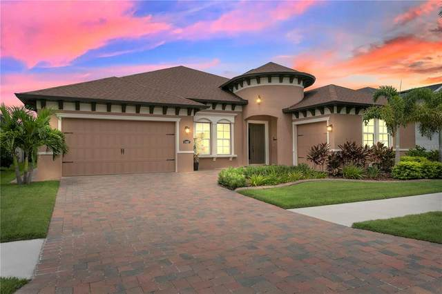 11627 Lake Lucaya Drive, Riverview, FL 33579 (MLS #T3324810) :: Everlane Realty
