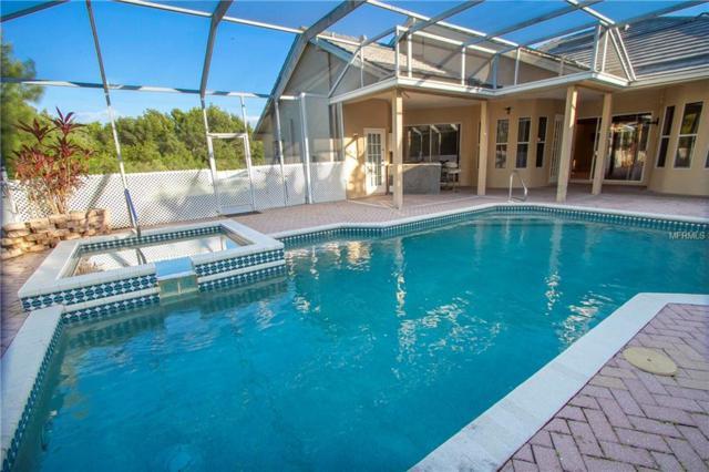 5119 Queen Palm Terrace NE, St Petersburg, FL 33703 (MLS #U8007048) :: The Lockhart Team