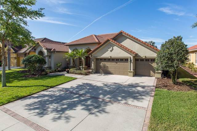 1601 El Pardo Drive, Trinity, FL 34655 (MLS #W7811067) :: Charles Rutenberg Realty