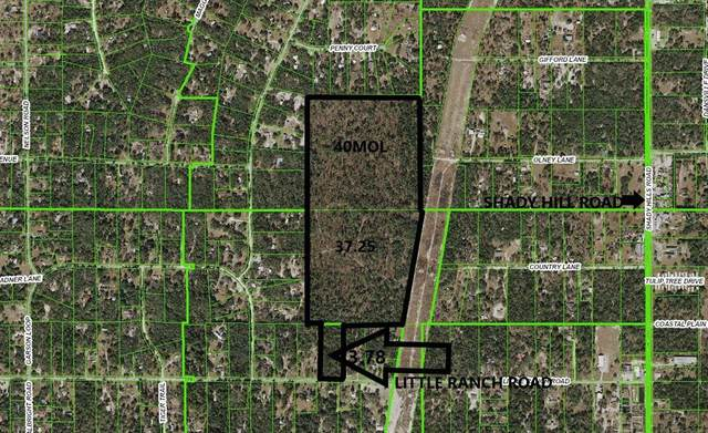 0 Little Ranch Rd. Street, Spring Hill, FL 34610 (MLS #W7813343) :: Zarghami Group