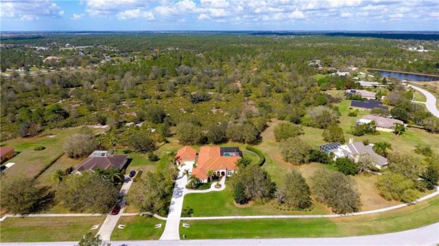 21715 Deer Pointe Crossing, Bradenton, FL 34202 (MLS #A4212015) :: Medway Realty