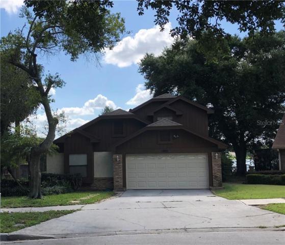 3140 Chatsworth Lane, Orlando, FL 32812 (MLS #O5747552) :: Team 54