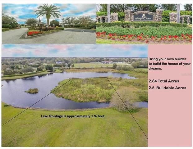 17310 Ballmont Park Drive, Odessa, FL 33556 (MLS #T3290360) :: Team Bohannon