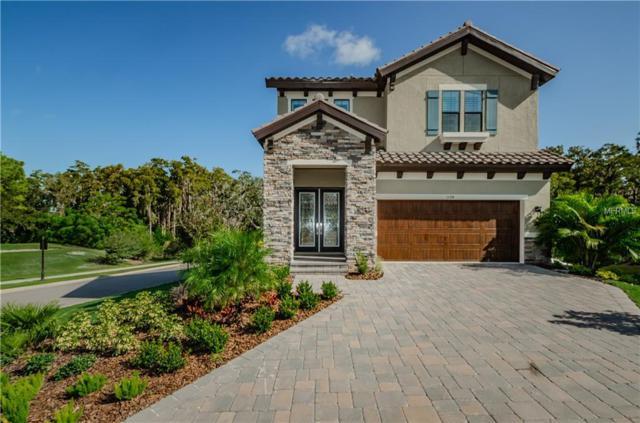 1594 Lavello Lane, Palm Harbor, FL 34683 (MLS #U7847532) :: Delgado Home Team at Keller Williams