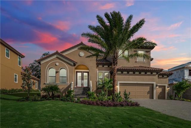 1375 Via Verdi Drive, Palm Harbor, FL 34683 (MLS #U7851466) :: Delgado Home Team at Keller Williams