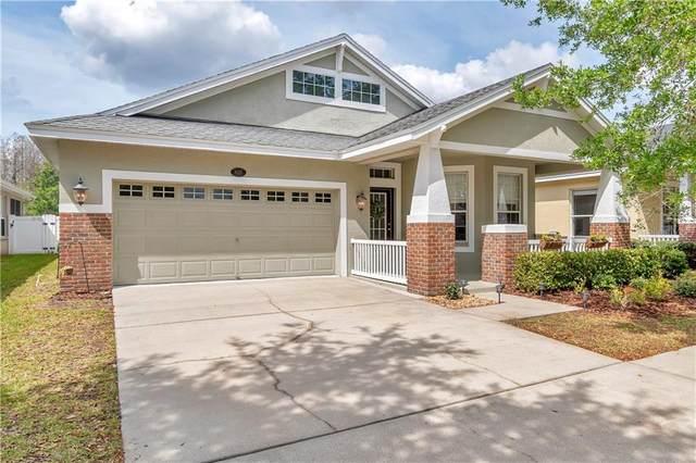 18225 Fall Creek Drive, Lutz, FL 33558 (MLS #U8078755) :: Griffin Group