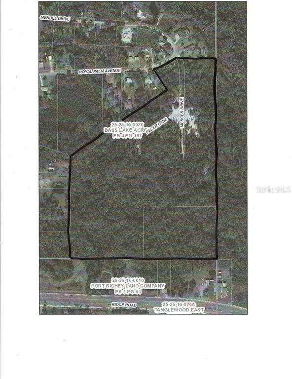 0 Royal Palm Avenue, New Port Richey, FL 34654 (MLS #W7523914) :: Sarasota Gulf Coast Realtors