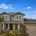 4513 Pointe O Woods Drive, Wesley Chapel, FL 33543 (MLS #A4207061) :: Delgado Home Team at Keller Williams
