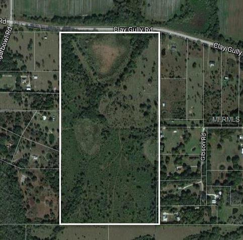 42110 Clay Gully Rd, Myakka City, FL 34251 (MLS #A4210813) :: Premium Properties Real Estate Services