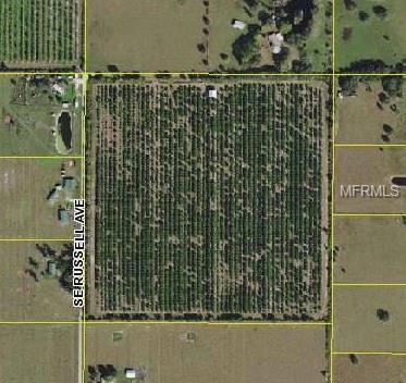 Russell Avenue, Arcadia, FL 34266 (MLS #A4212246) :: Griffin Group
