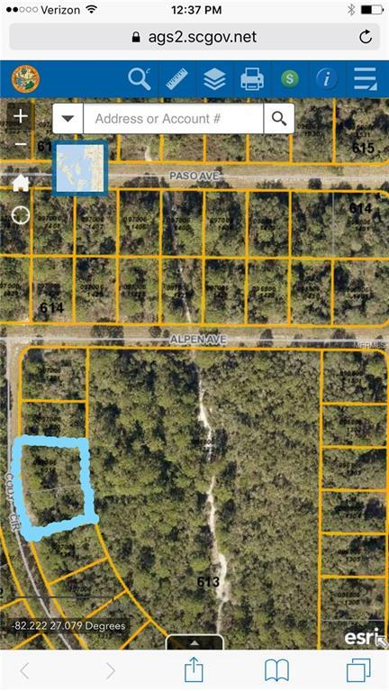 Cody Circle, North Port, FL 34291 (MLS #A4215709) :: Griffin Group