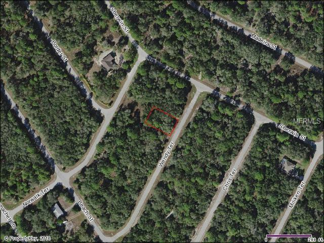 1235 Wendy Terrace, Port Charlotte, FL 33953 (MLS #A4400096) :: KELLER WILLIAMS CLASSIC VI