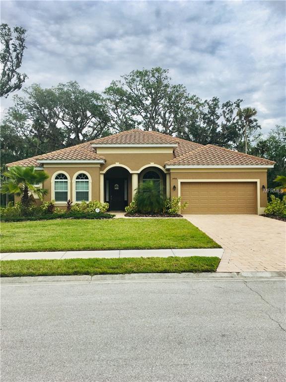5406 132ND Terrace E, Parrish, FL 34219 (MLS #A4400549) :: Team Pepka