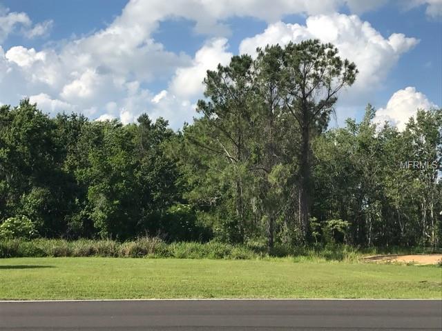 Lot K2 Blue Heron Circle, Deer Island, FL 32778 (MLS #A4401777) :: The Duncan Duo Team