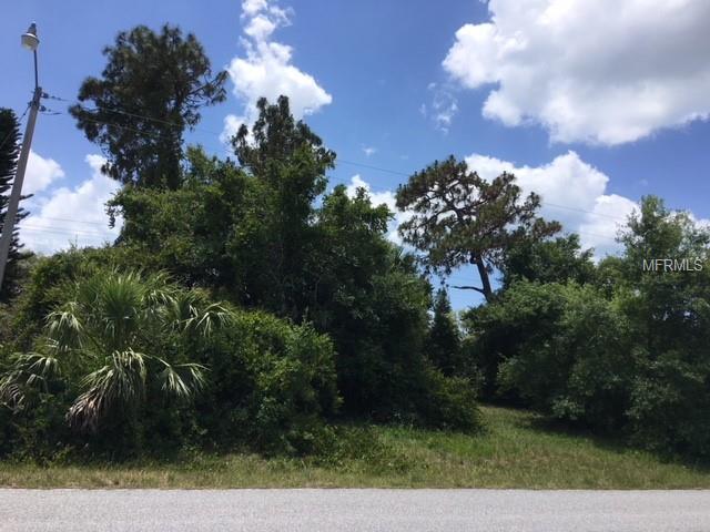 Briarwood Road, Venice, FL 34293 (MLS #A4402281) :: Medway Realty