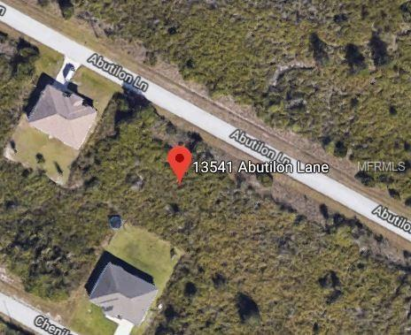 13541 Abutilon Lane, Port Charlotte, FL 33981 (MLS #A4404269) :: The BRC Group, LLC