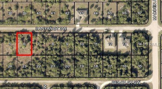 846 Banyan Street SW, Palm Bay, FL 32908 (MLS #A4404433) :: The Lockhart Team