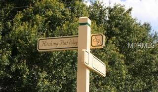 Hitching Post Way - Photo 1
