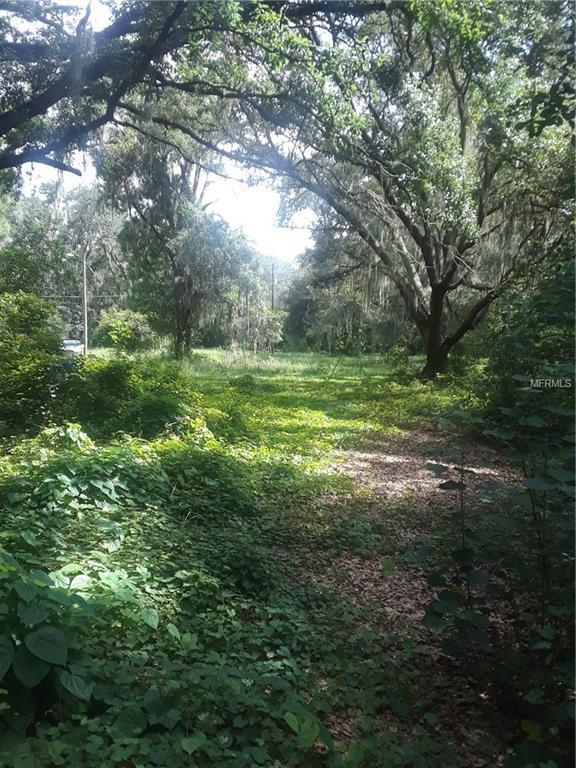 311 E Bloomingdale Avenue, Brandon, FL 33511 (MLS #A4408655) :: Dalton Wade Real Estate Group