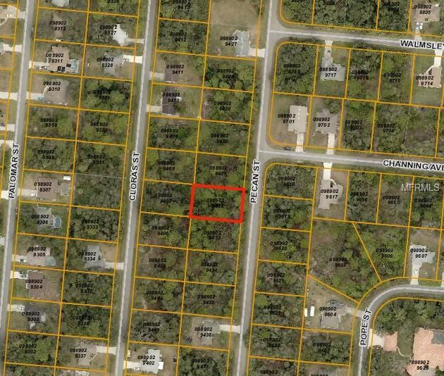 Pecan Street, North Port, FL 34287 (MLS #A4411269) :: The Duncan Duo Team