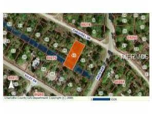 13487 Carousel Drive, Punta Gorda, FL 33955 (MLS #A4412484) :: RE/MAX Realtec Group