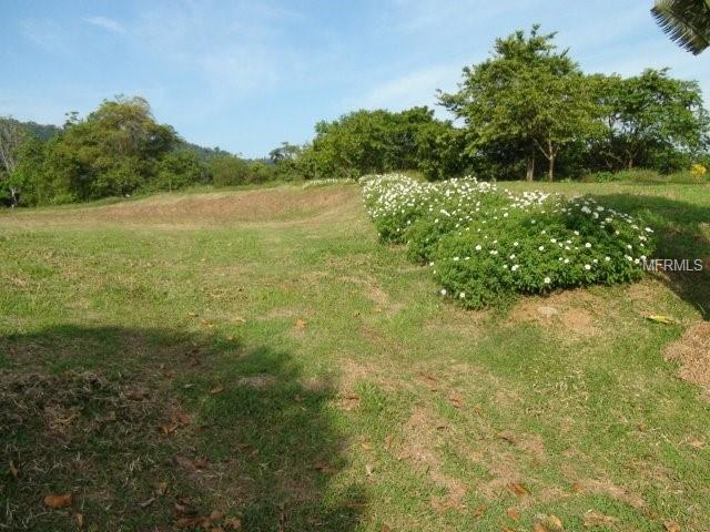Lot 78 Grand View Road, CIMARRONES COSTA RICA, OC 00000 (MLS #A4412680) :: RE/MAX Realtec Group
