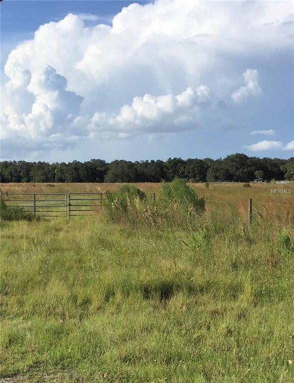 Piggy Back Road, Arcadia, FL 34266 (MLS #A4413394) :: G World Properties