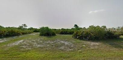 396 Baytree Drive, Rotonda West, FL 33947 (MLS #A4413668) :: G World Properties