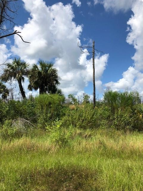 Bignay Road, North Port, FL 34288 (MLS #A4414216) :: Burwell Real Estate