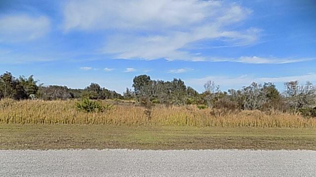 40805 E 11TH Avenue, Myakka City, FL 34251 (MLS #A4425438) :: Burwell Real Estate