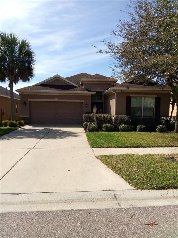 17315 Chelsea Downs Circle, Lithia, FL 33547 (MLS #A4427714) :: Dalton Wade Real Estate Group