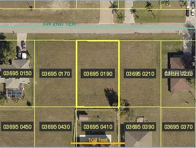 1920 SW 2ND Terrace, Cape Coral, FL 33991 (MLS #A4435701) :: The Duncan Duo Team